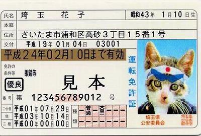 なめ猫風免許証